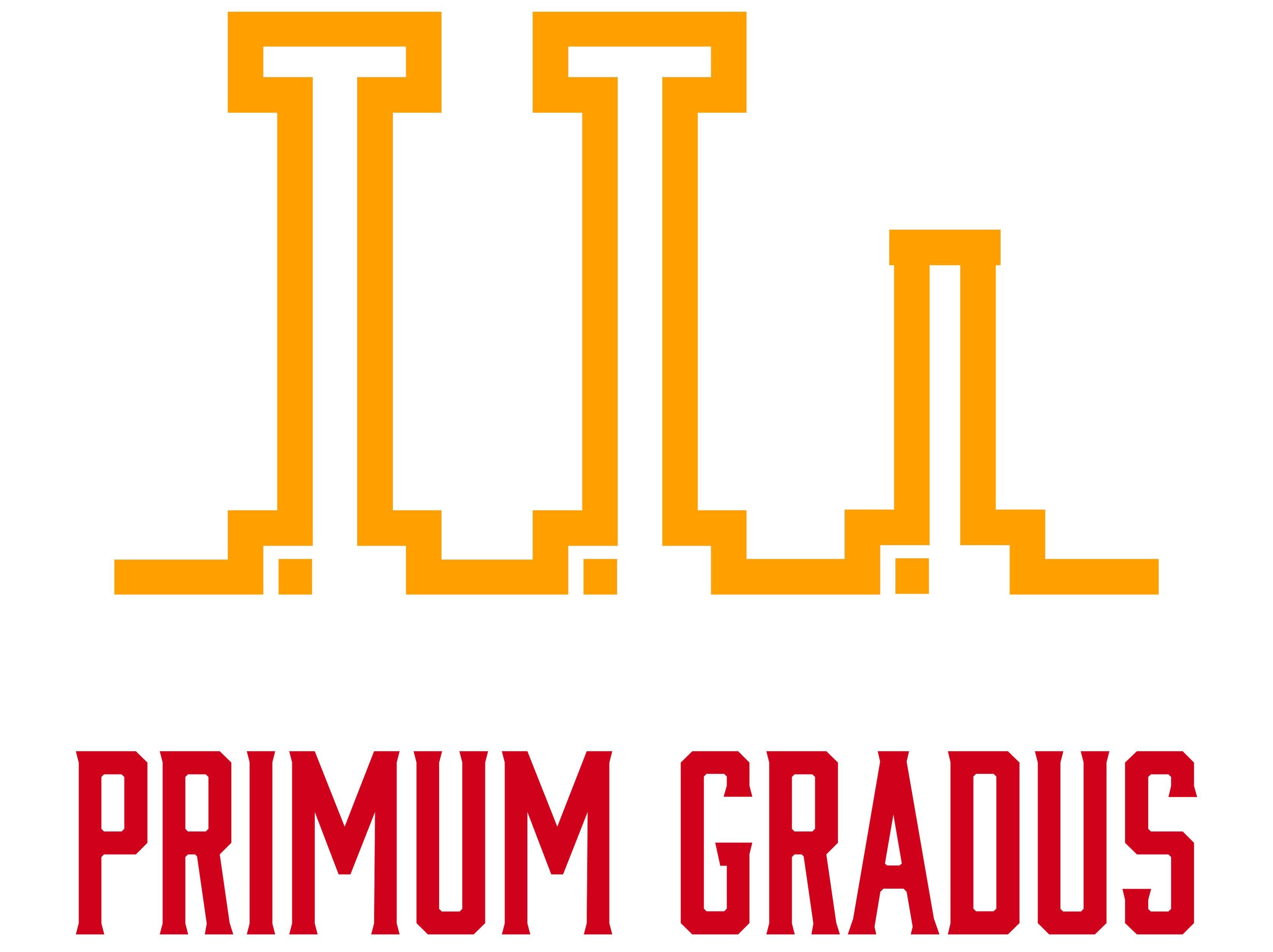 PRIMUM GRADUS (el primer paso)